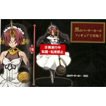 Fate/Apocrypha Berserker of Black 弗兰肯斯坦 景品
